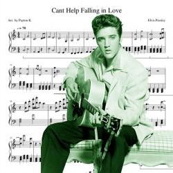Elvis Presley - Cant Help...