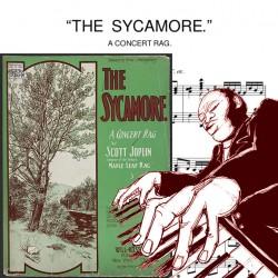 Scott Joplin - The Sycamore...
