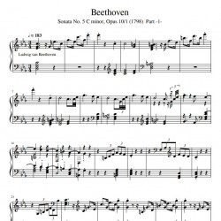 Beethoven - Sonata No. 5 C minor, Opus 101 (1798) - Piano