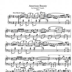 American Beauty Rag (1913)...