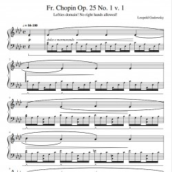 Chopins & Godowsky: Étude...