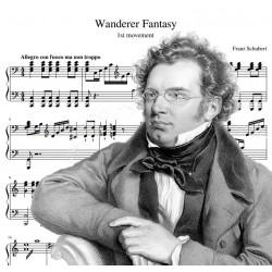 Franz Schubert - Wanderer...
